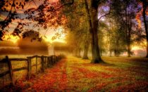 Countdown to Autumn Equinox 2017